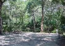 Anastasia State Park Web Site