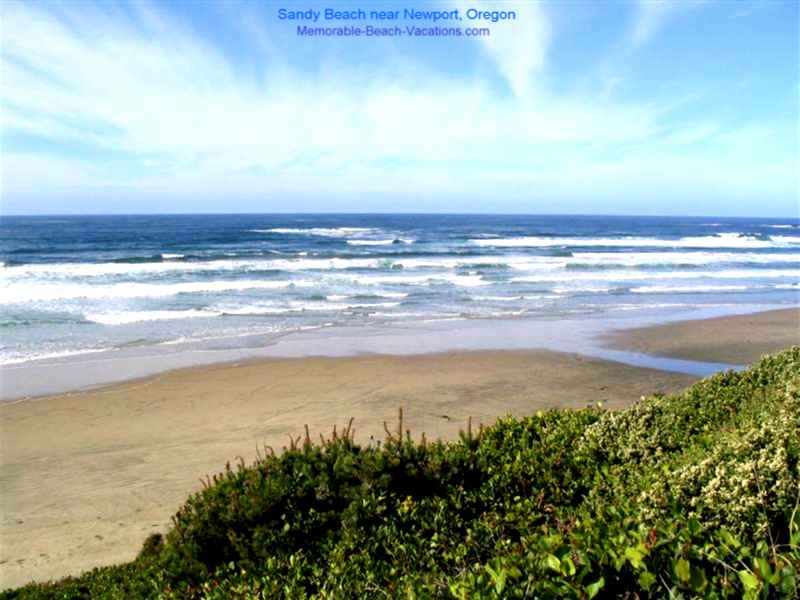Sandy Beach near Newport, Oregon