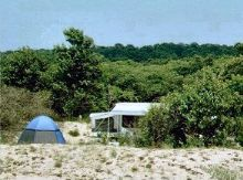 First Landing State park campsite - Virginia Beach Camping area