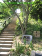 Steps up to Old Cape Henry Lighthouse - Virginia Beach area picture
