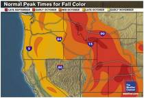 Projected Oregon Fall Foliage Map sample