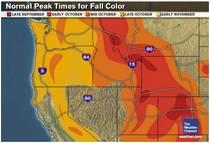 Projected Oregon Fall Foliage Map sample