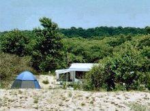 First Landing State park campsite - Virginia Beach Camping area